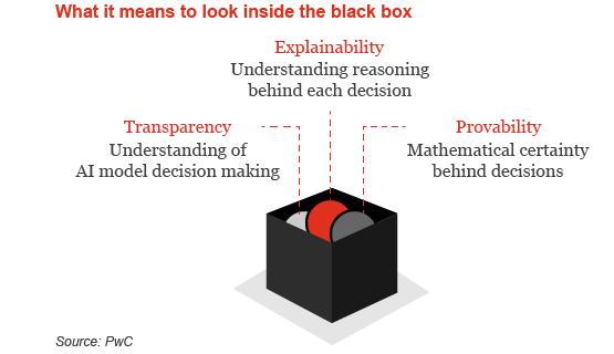Black Box AI